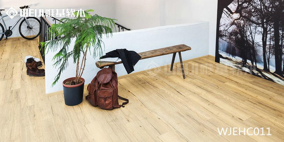 德国爱格软木地板