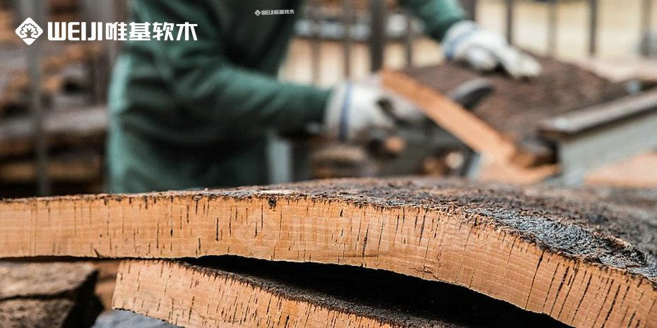 天然软木塞树皮
